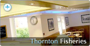Shop Fitting for Thornton Fisheries